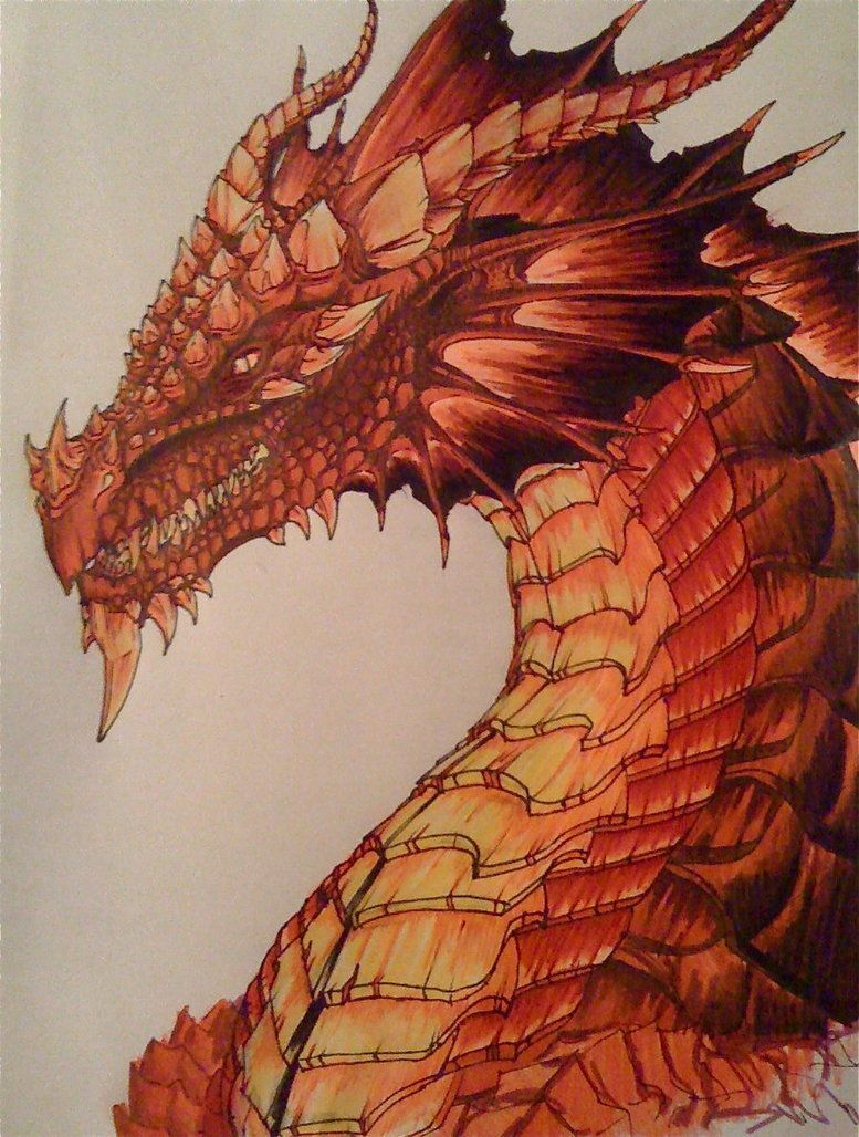 Red dragon by Chaylar on DeviantArt | Red dragon, Dragon ...