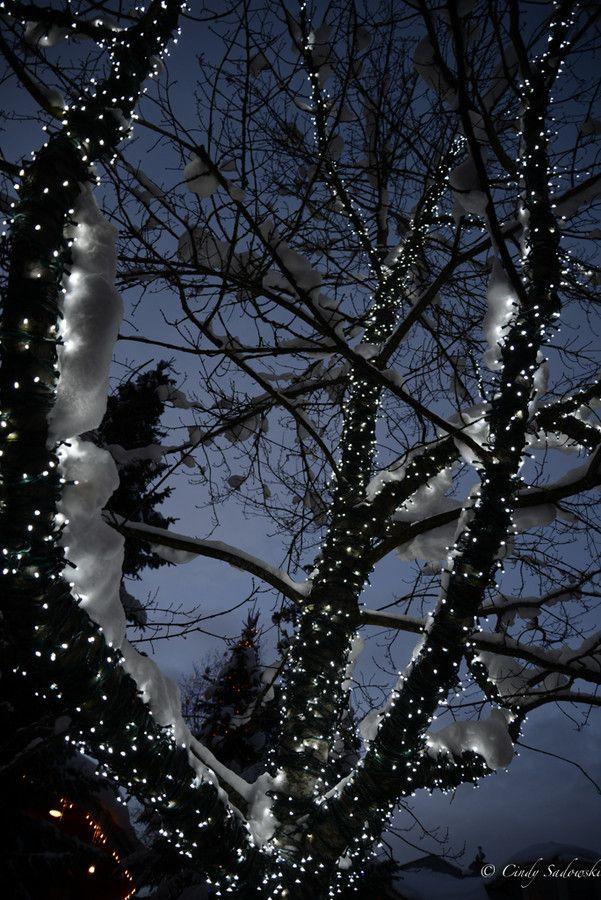Night Time Sparkle by Cindy Sadowski on 500px
