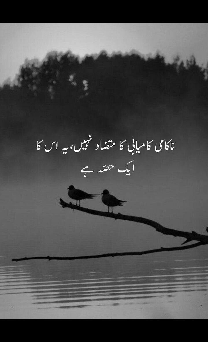 Mutazaad Means Antonym Urdu Pinterest Urdu Quotes Urdu