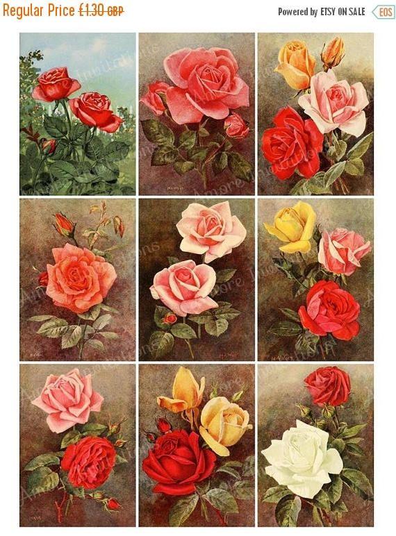 printable vintage roses floral flowers collage sheet tags jpg