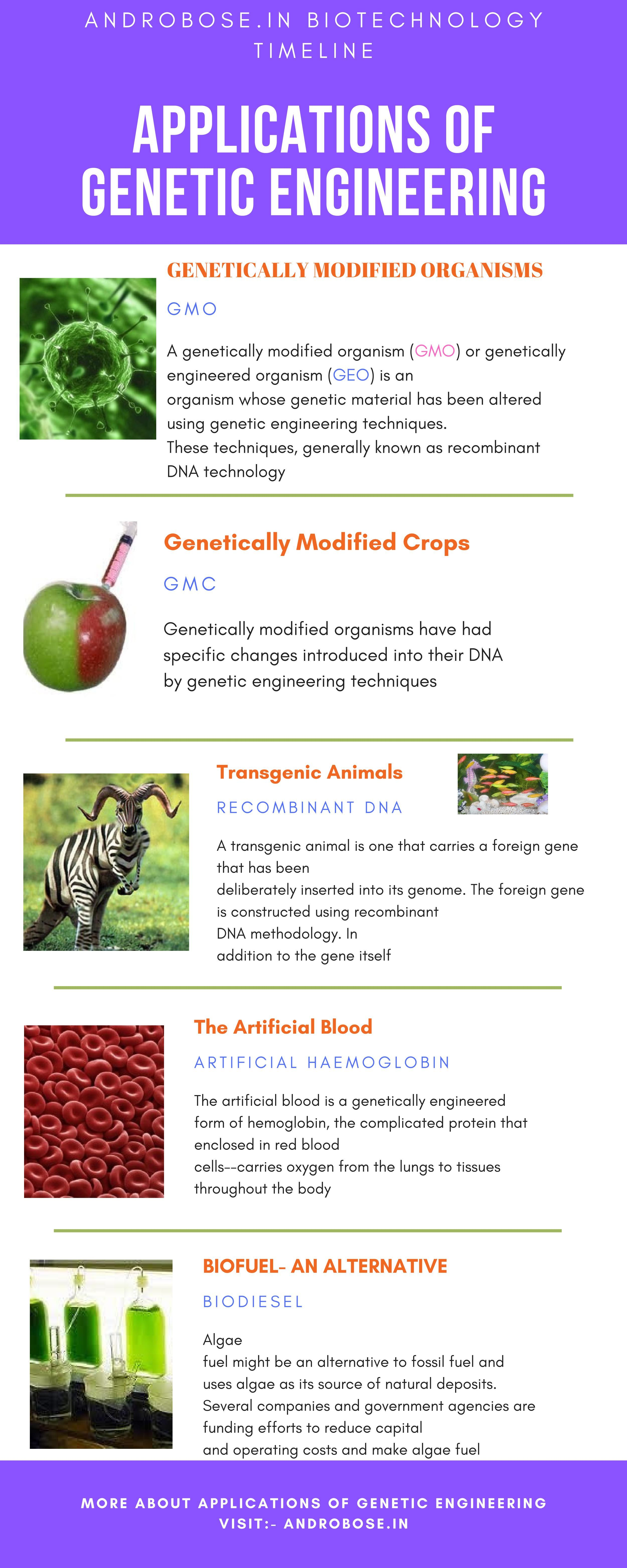 Application Of Genetic Engineering Dna Technology Genetically Modified Food Advantage And Disadvantage Essay