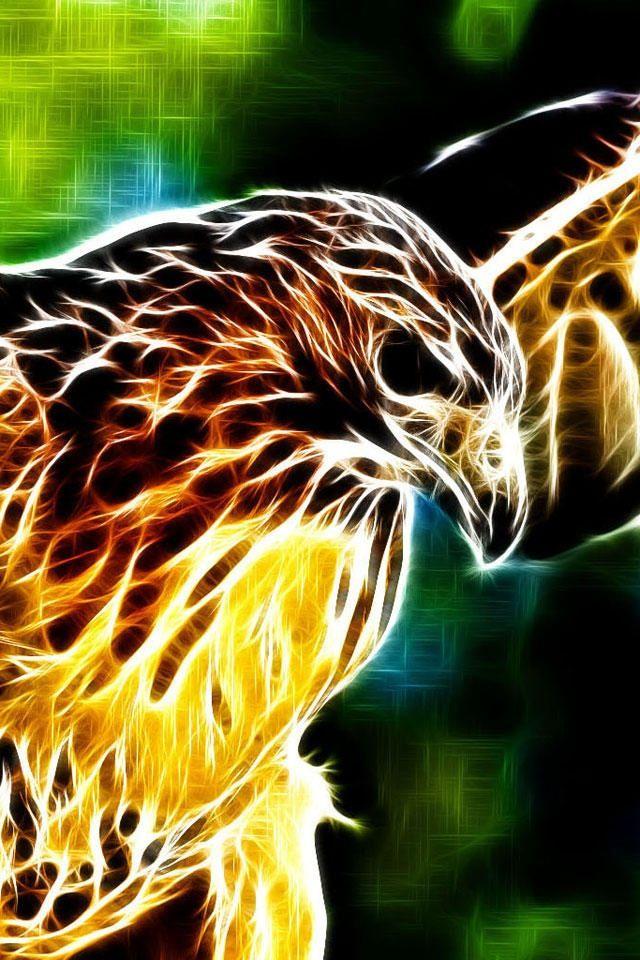 Hawk Like Hawks If You Follow I Ll Put More Natureza Fotos