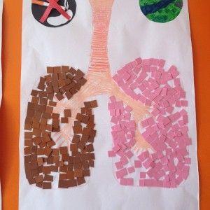 Lungs Craft Human Body Crafts Nurse Crafts Body Preschool