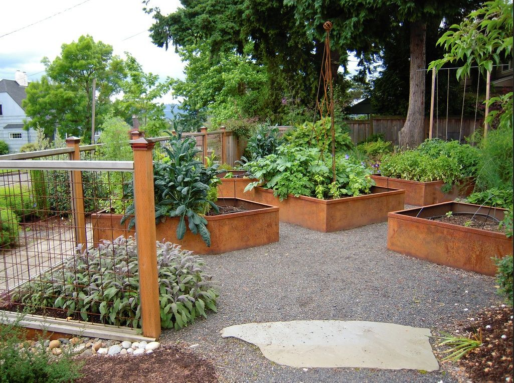 Corten Steel Raised Beds Planted Beautifully With Herbs