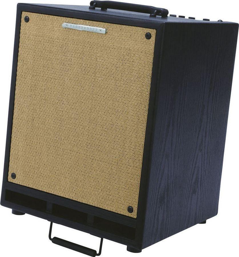 Ibanez T80N-U Troubadour Acoustic Combo
