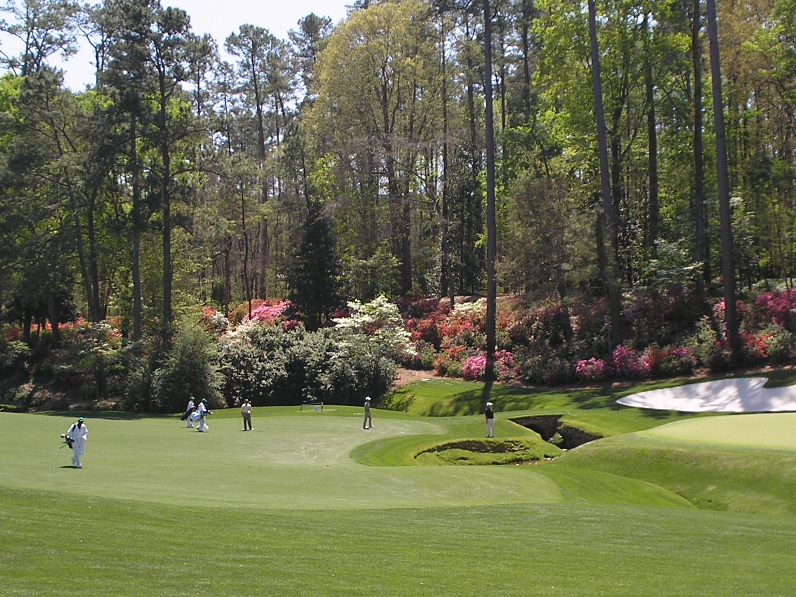 Augusta National Golf Course (With images) Golf courses