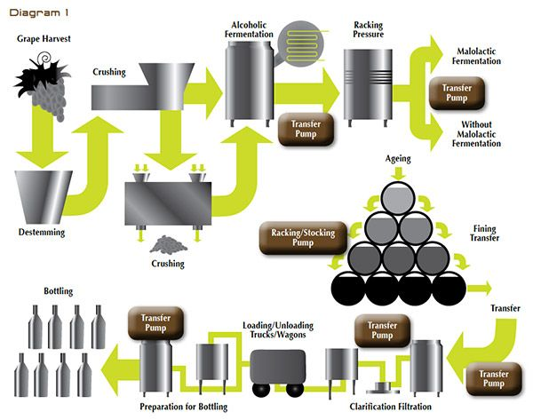 collection wine making process diagram pictures   diagramswine making process diagram