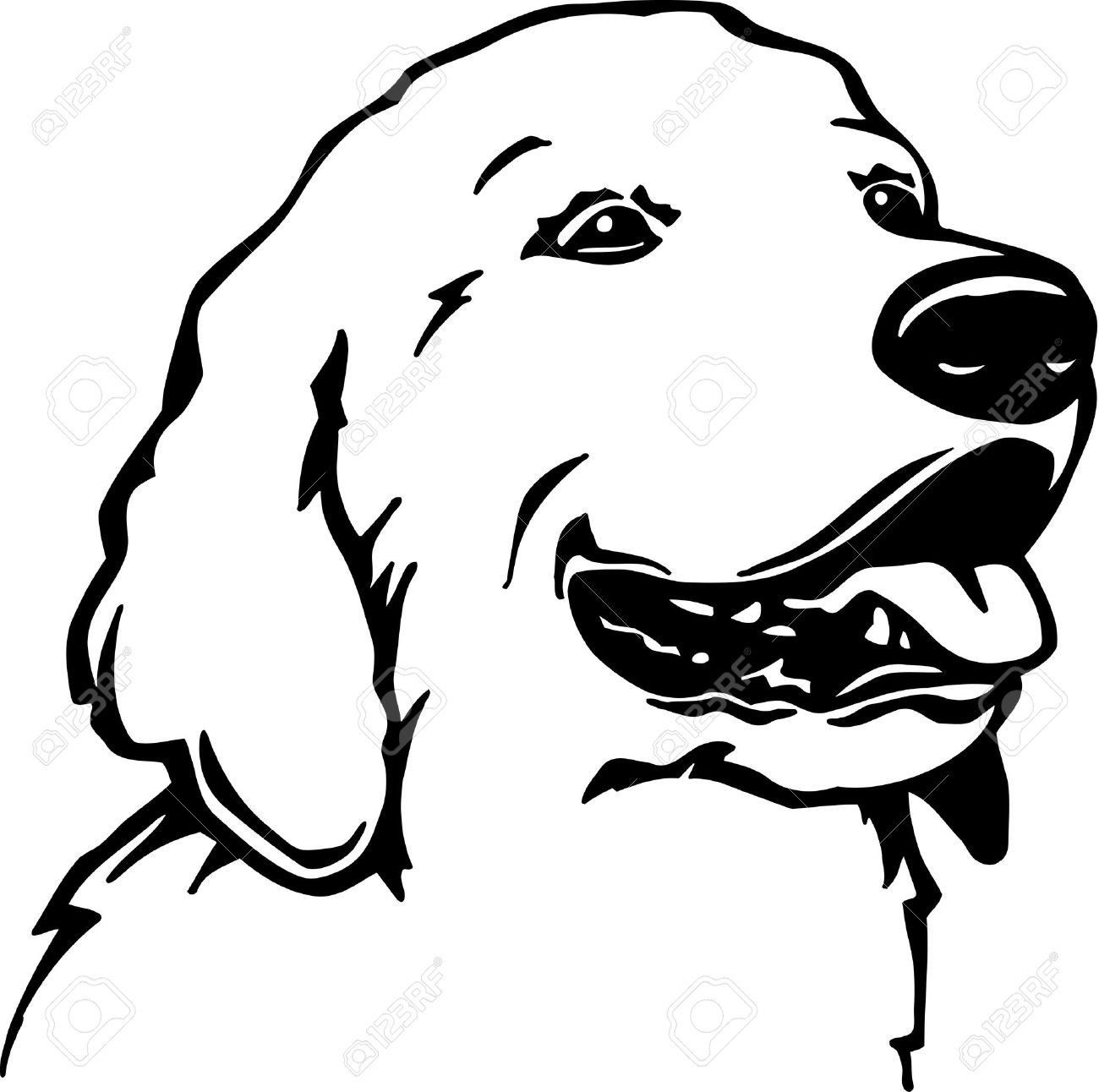 Golden Retriever Cliparts Stock Vector And Royalty Free