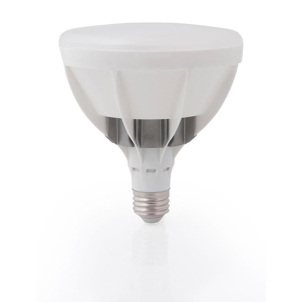 34+ Led flood lamps home depot information