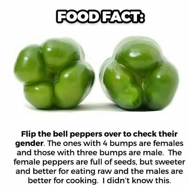 FACT CHECK: Do Bell Peppers Have Genders?
