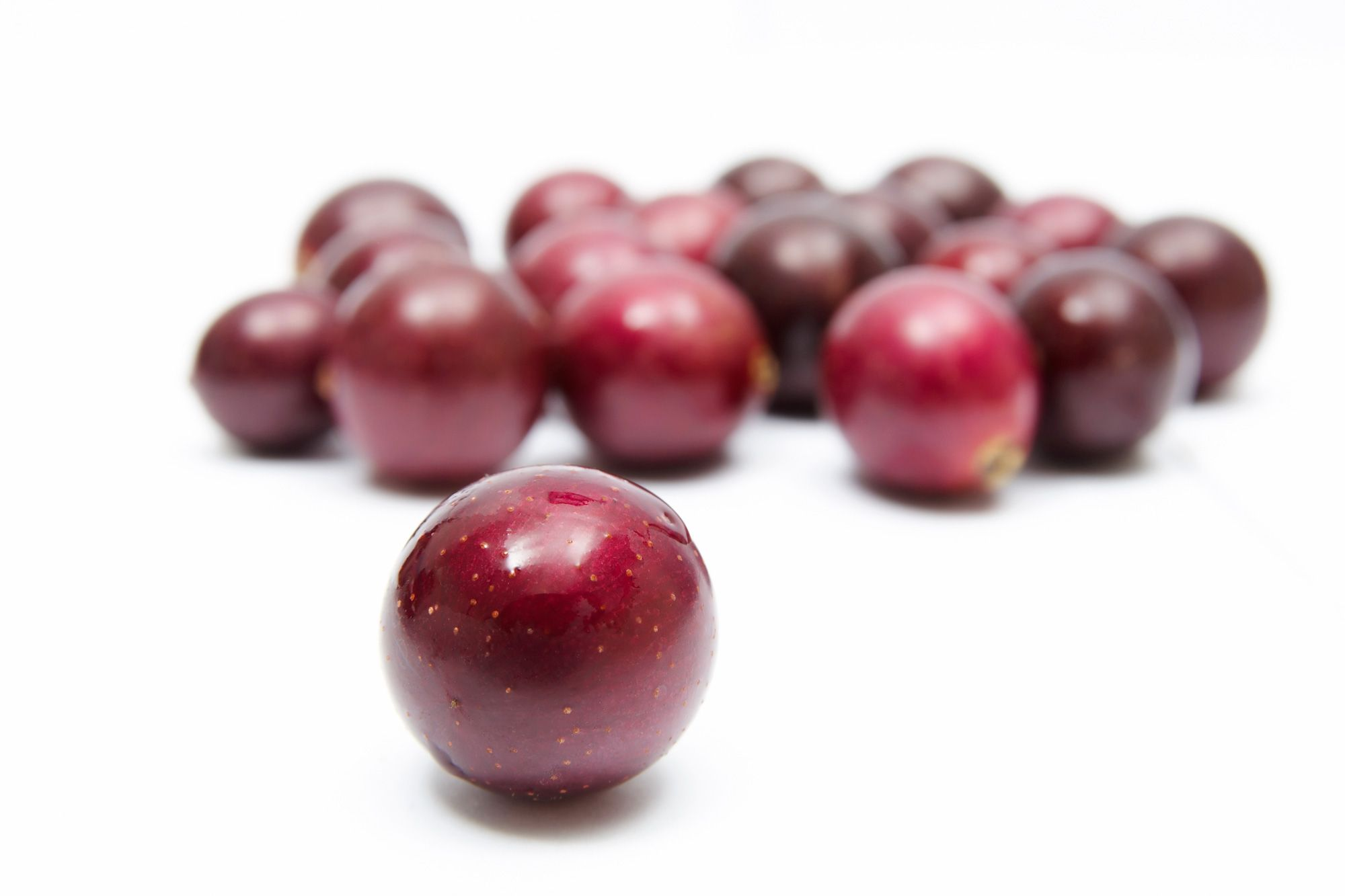 Muscadine Grapes Amazing Green Grapes Nutrition Blackberry Nutrition Lentil Nutrition Facts