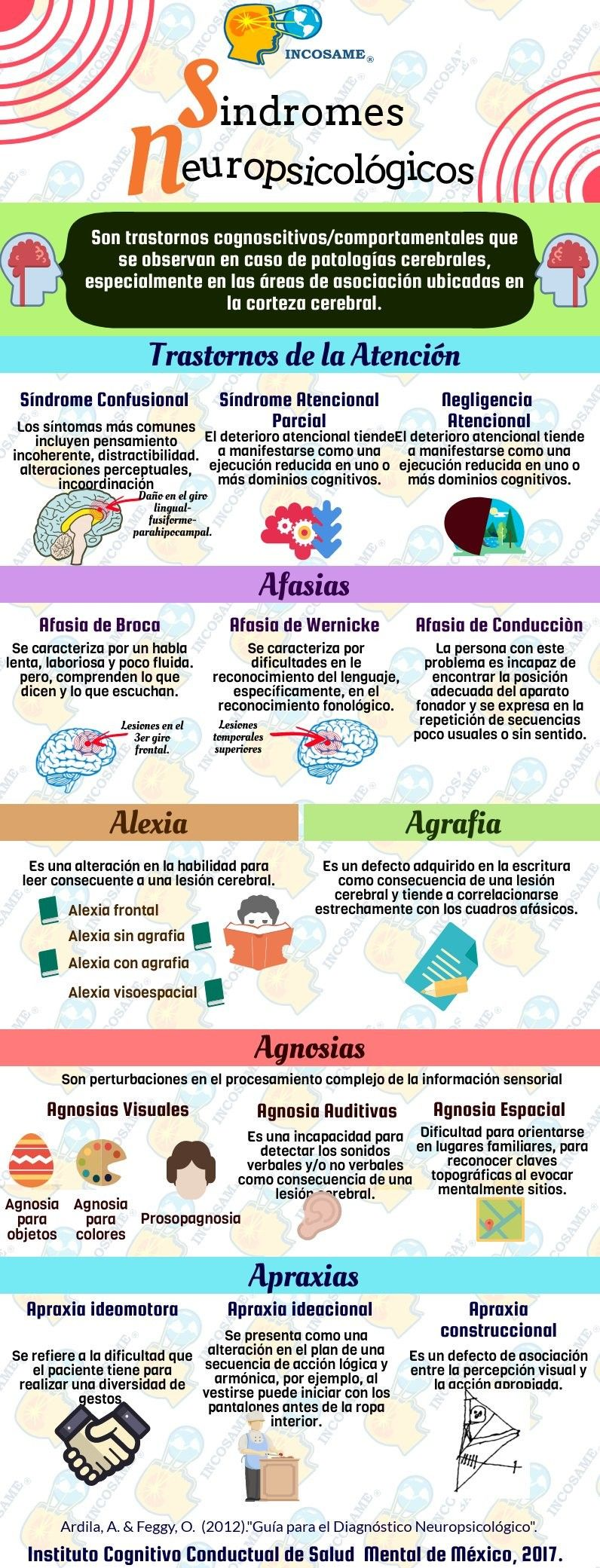 Sindromes Neuropsicologicos Psicologia Educacional Psicologia Educativa Psicologia Y Psiquiatria