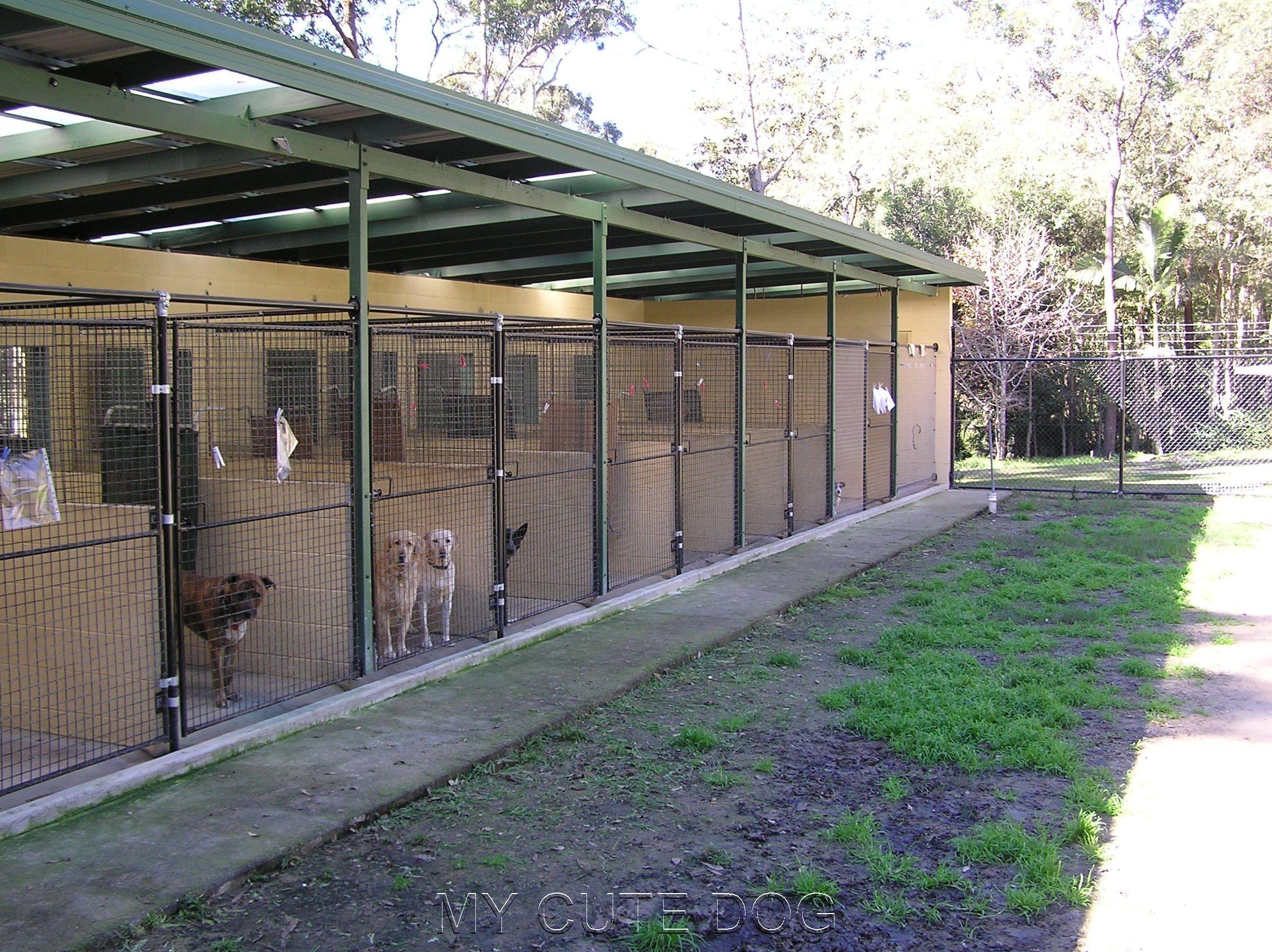 44 Outdoor Dog Kennel Ideas Canis Casotas Para Caes Canil Backyard dog kennel ideas