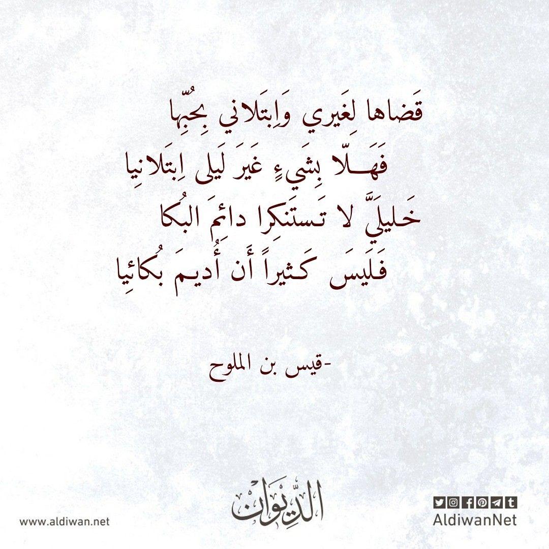 الديوان موسوعة الشعر العربي قيس بن الملوح Calligraphy Arabic Calligraphy