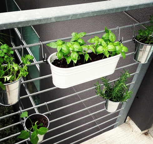 Herb Garden out of Ikea buckets perfect for a balcony DIY