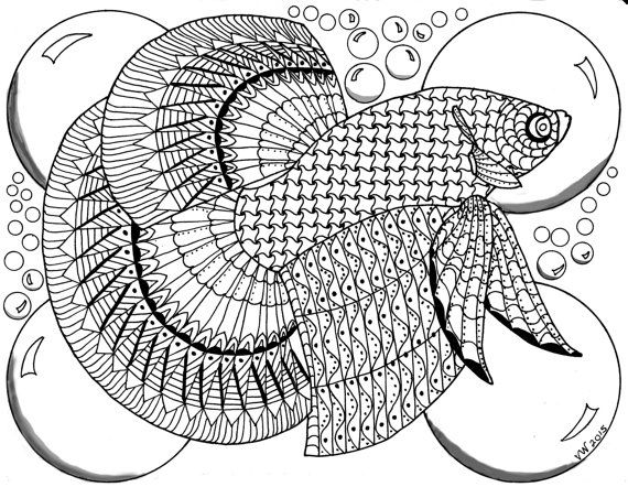 betta fish coloring Pages | Betta Fish Coloring Online | Konst ... | 442x570