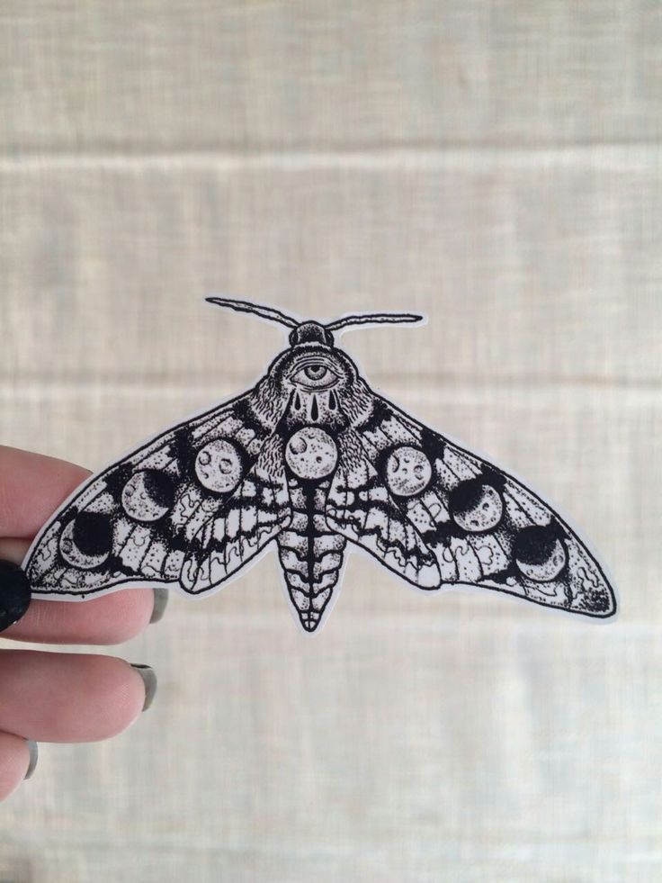 Awesome Combinations Of A Night Butterfly And Moon Phases Darkness