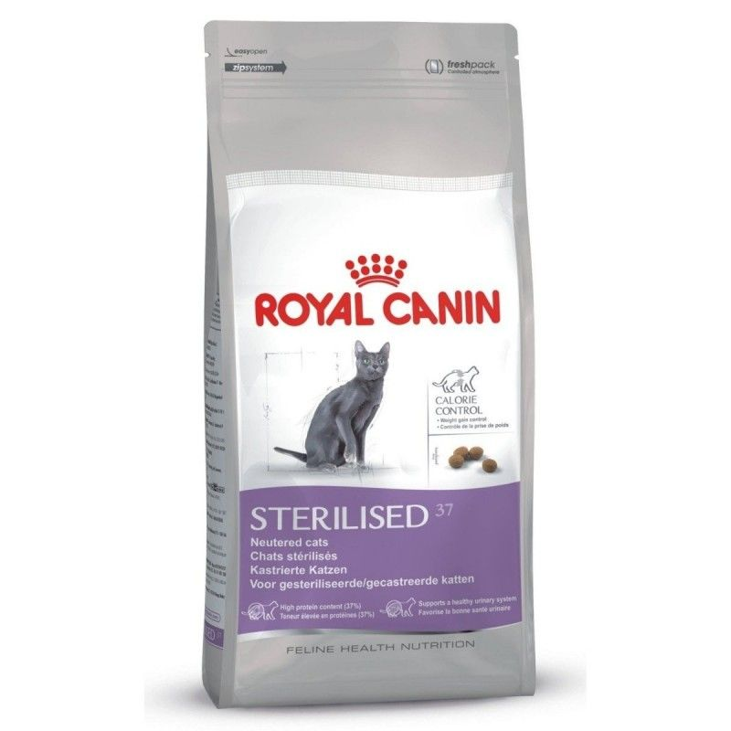 It's just a graphic of Lively Royal Canin Coupons Printable