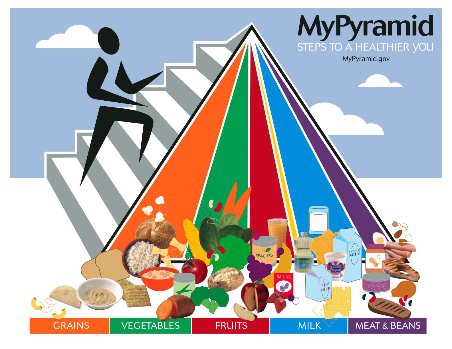 The Usda Food Pyramid Is A Political Document