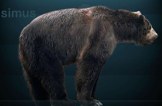 The Dinosaurs and Prehistoric Animals of California: Which Dinosaurs and Prehistoric Animals Lived in California? #extinct mammals What Prehistoric Life Was Like in the Golden State #prehistoricanimals