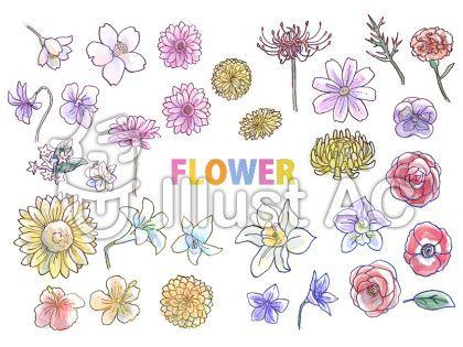 手書き花イラストセット 色つき 花 イラスト イラスト ボールペン イラスト