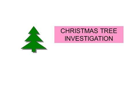 CHRISTMAS TREE INVESTIGATION YOUR CHALLENGE IS TO INVESTIGATE THE