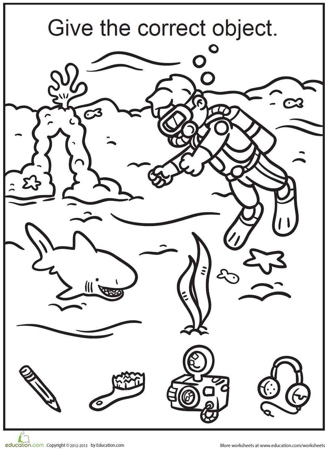 Scuba Diving Missing Object