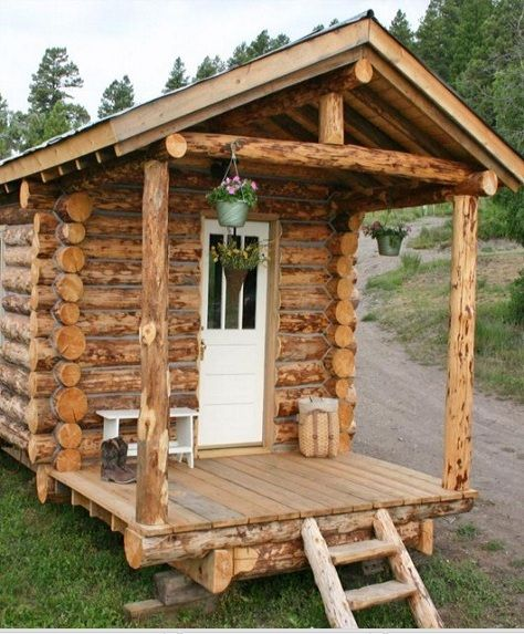 10 Diy Log Cabins Learn To Build Your Own For A Rustic Lifestyle Diy Log Cabin Small Log Cabin Tiny Log Cabins