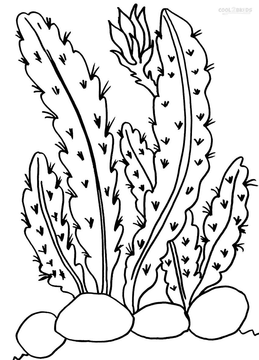 Printable Cactus Coloring Pages For Kids | Cool2bKids ...