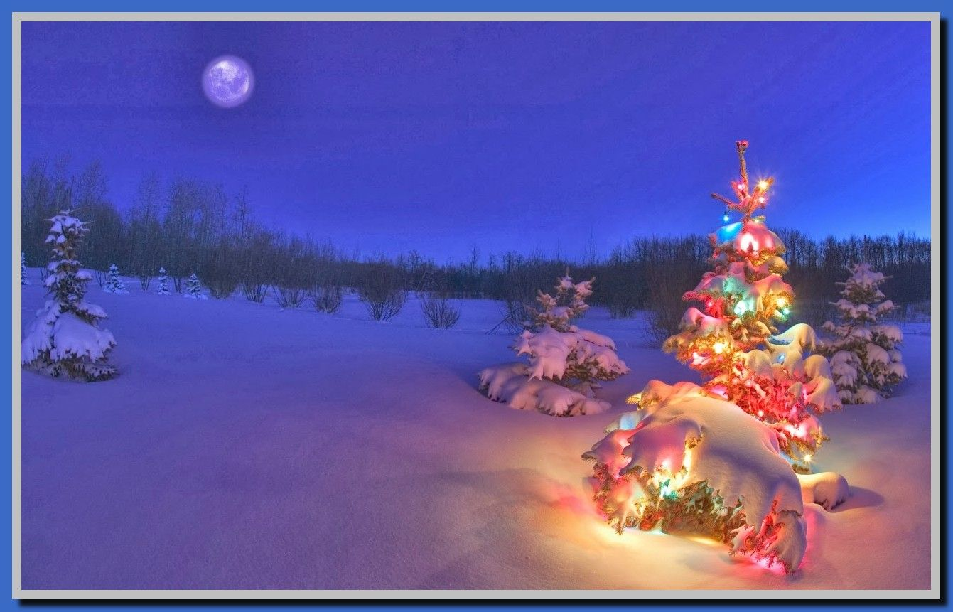 77 Reference Of Night Light Windows 10 Download Christmas Wallpaper Hd Christmas Lights Wallpaper Christmas Wallpaper Free