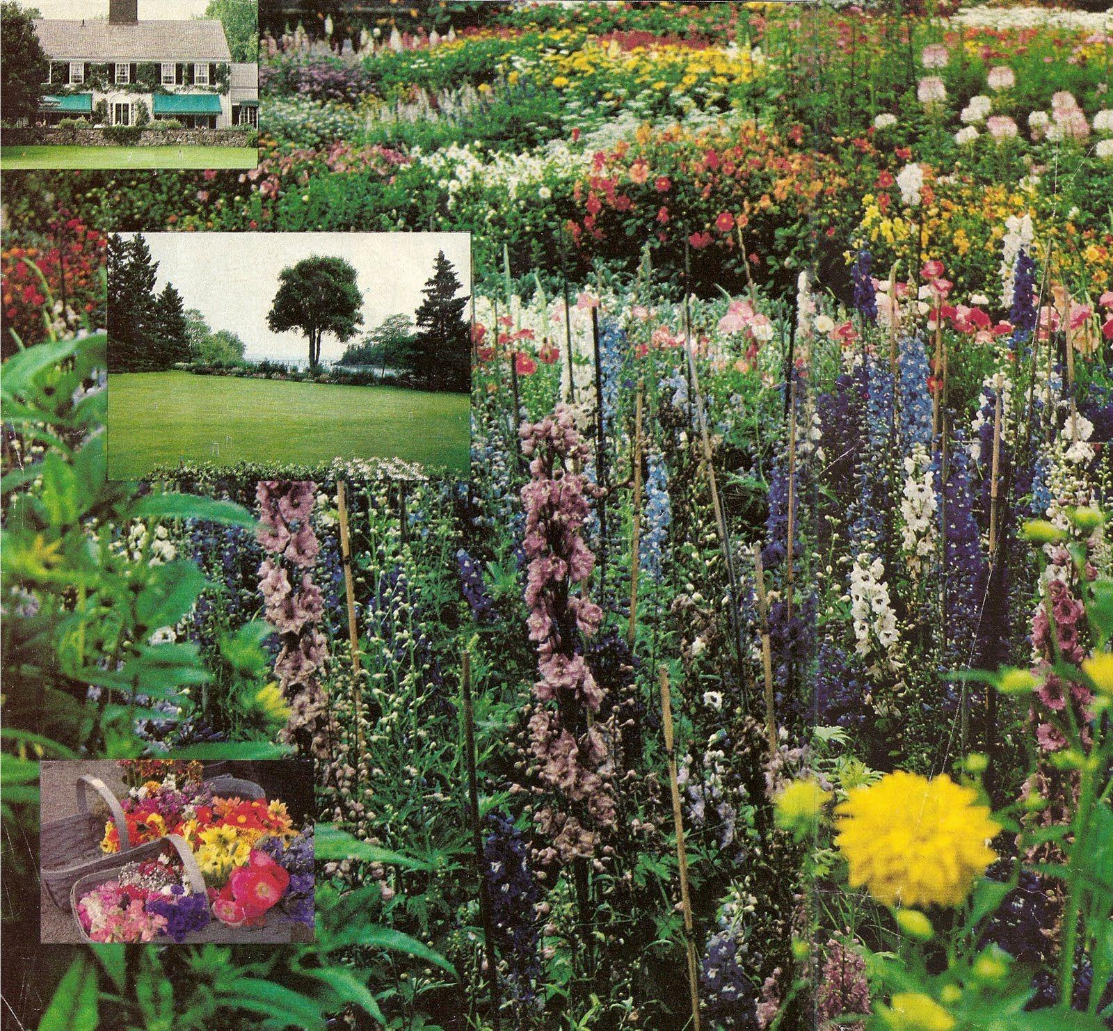 Brooke Astor S Garden At Cove End In Maine Garden Design By Beatrix Farrand Vintage Gardening Garden History Garden Design