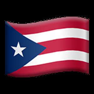 Flag Of Puerto Rico Puerto Rico Flag Flag Puerto Rico