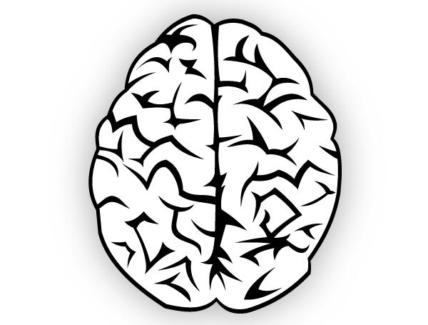 brain vector free brain free vector illustration and coreldraw rh pinterest com coreldraw vectors free download free vector downloads logo for coreldraw