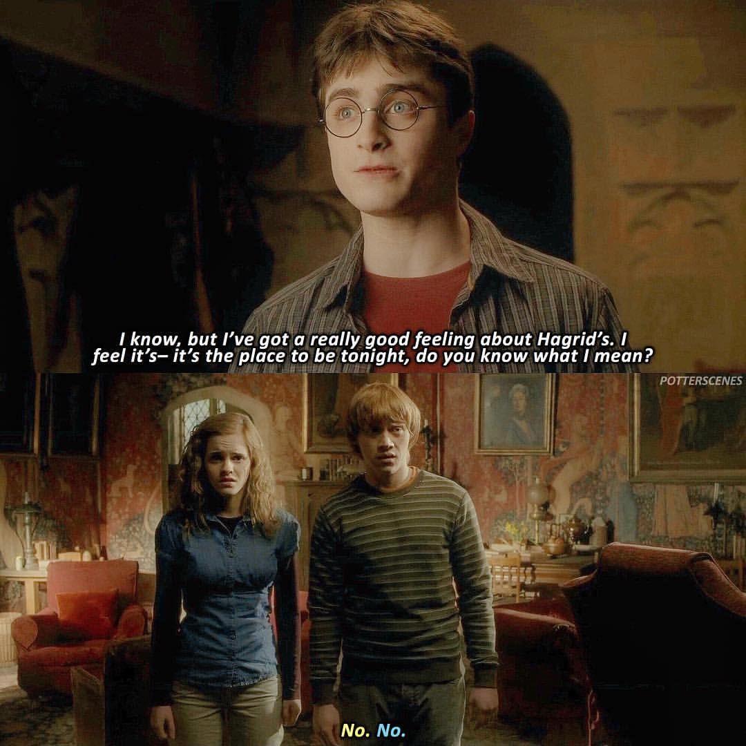 Halfbloodprince 2009 Harry Potter Twilight Harry Potter Fandom Harry Potter Fan