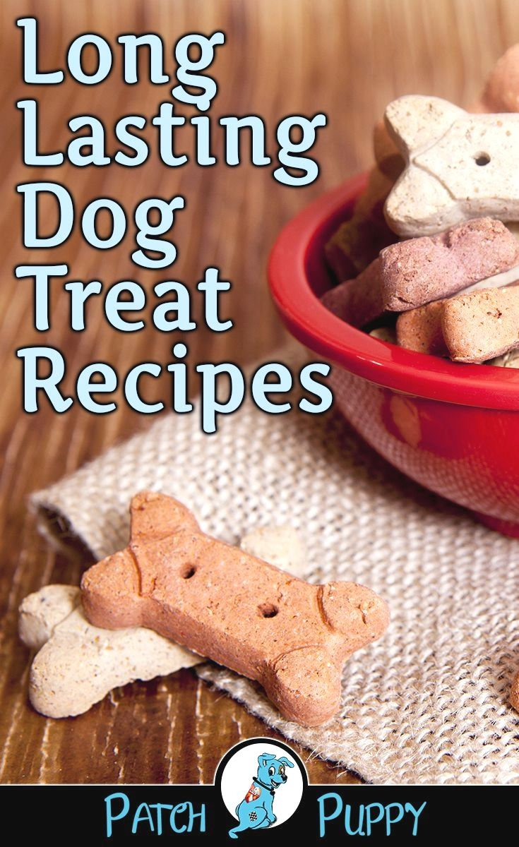 Homemade Cat Food Recipes image by Blanca Roberson Dog