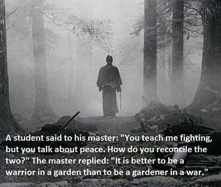 It Is Better To Be A Warrior In A Garden Than A Gardener In A War