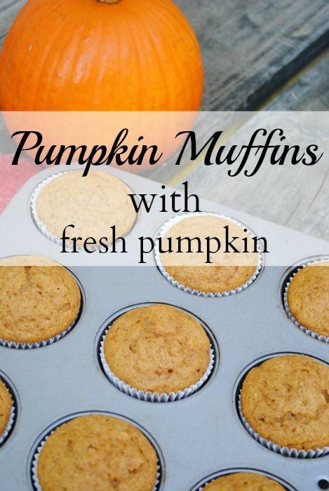 Pumpkin muffins #pumpkinmuffins