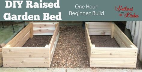 DIY Raised Garden Bed Beginner Level is part of Rose garden Bed - beginner