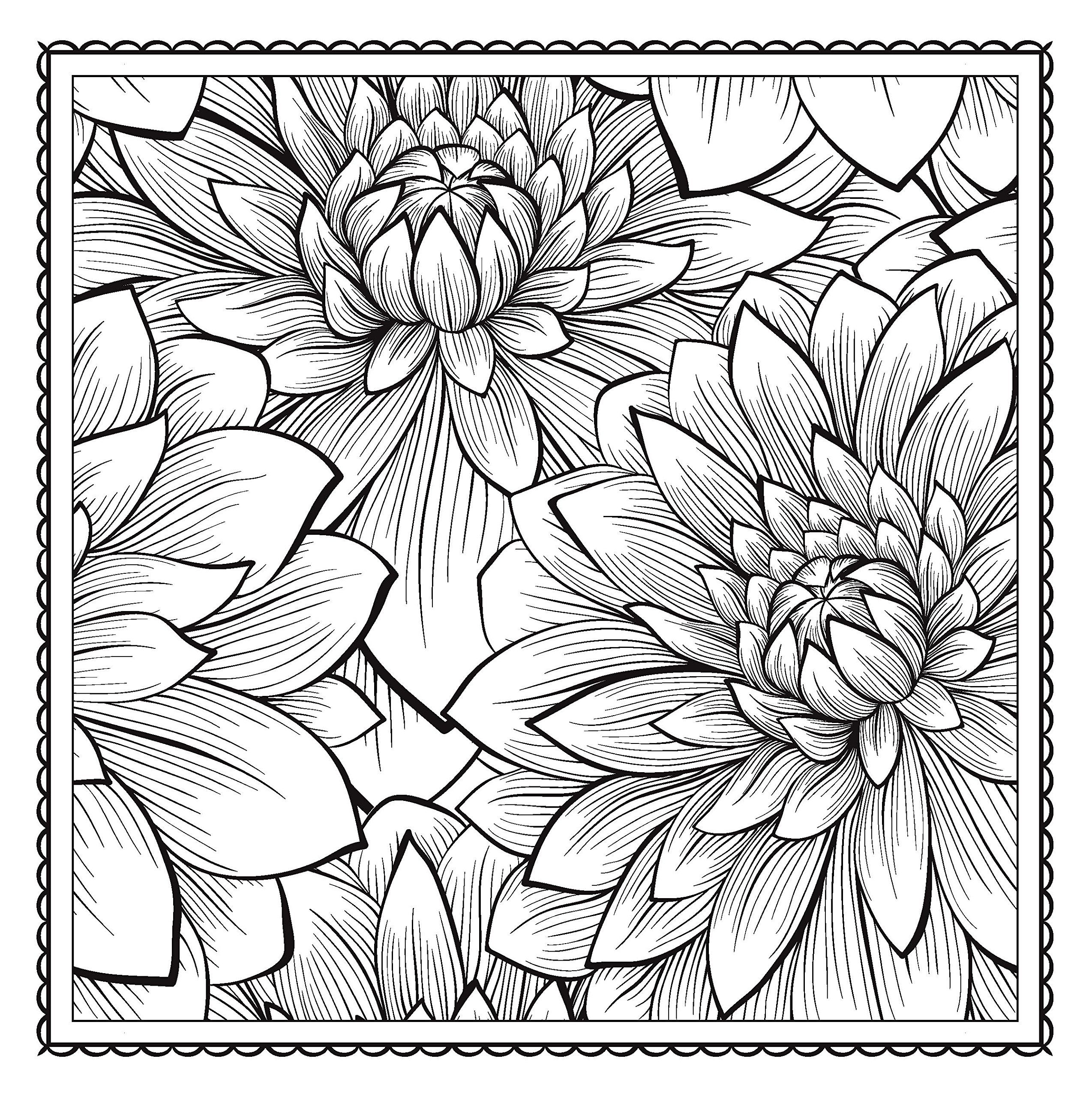 Blossom magic beautiful floral patterns coloring book for adults