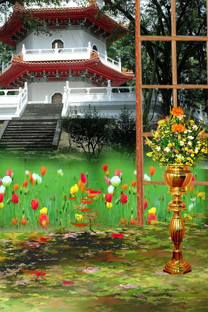 Studio Background Hd 1080p Photoshop Backgrounds Photoshop Backgrounds Backdrops Photoshop Backgrounds Free