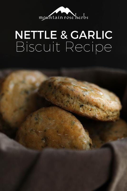 Spring Nettle Garlic Buttermilk Biscuits In 2020 Nettle Recipes Buttermilk Biscuits Recipes