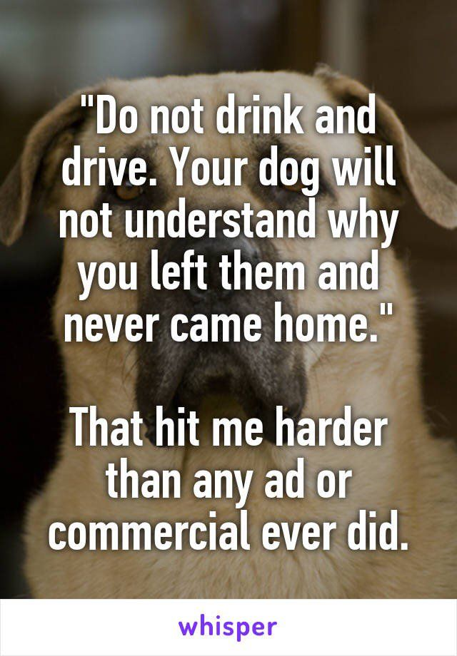 Awww There Are A Billion Reasons Why People Shouldnt Drink Drive