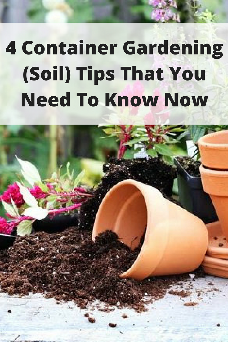 4 Container Gardening (Soil) Tips That You Need To Know Now