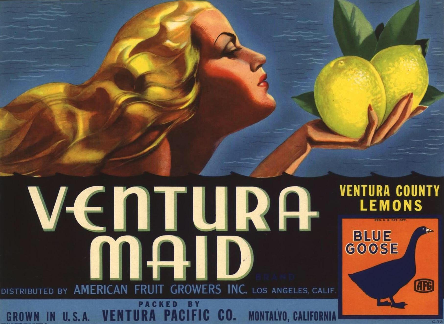 PACIFIC MAID~RARE ORIGINAL 1930s MONTALVO VENTURA CALIFORNIA LEMON CRATE LABEL