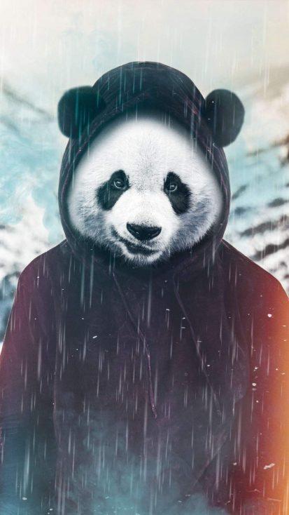 The Panda iPhone Wallpaper in 2020 Iphone wallpaper