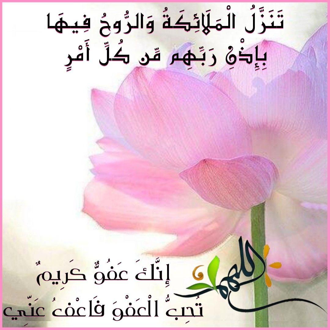 قرآن كريم آية سوره القدر تنزل الملائكة والروح فيها Cards Peace