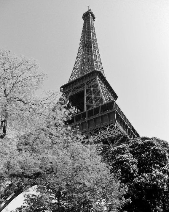 Eiffel tower in autumn paris france 16 x 20 by dlobosphotography 18 99