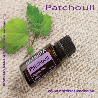PATCHOULI ESSENTIAL OIL / PATCHOULI ETERISK OLJA
