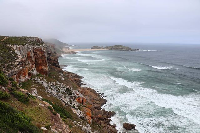 Robberg Nature Reserve is a good hike with lovely views! @CanonRSA #LiveForTheStory #Canon77D #PlettenbergBay #SouthAfrica #TheLifesWay #Photoyatra #AashishRaiJain #WalkingwithCamera #photographerwithpassion #instagrammer #6yearsofthelifesway #canoneos #CanonDslr #canonphotographer #canonrebel #canonphotos #Blogger #vLogger #TechBlogger #photographylover #TravelBlogger #tsisikamma #Funwithfamily #iglobal_photographers #travelsouthafrica #GardenRoute #VitaminSea #EasternCape #IndianOcean www.thel