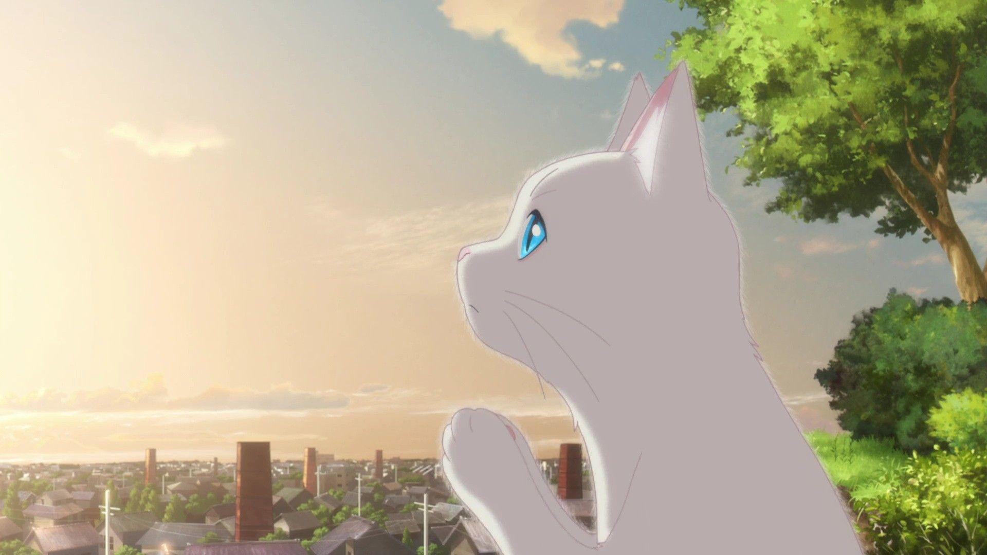 Pin on Anime Movies